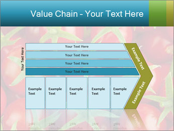 0000063172 PowerPoint Templates - Slide 27