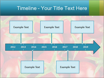 0000063172 PowerPoint Template - Slide 28