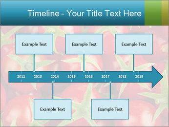 0000063172 PowerPoint Templates - Slide 28