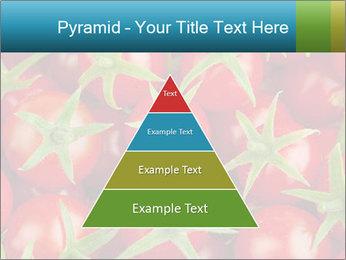 0000063172 PowerPoint Templates - Slide 30