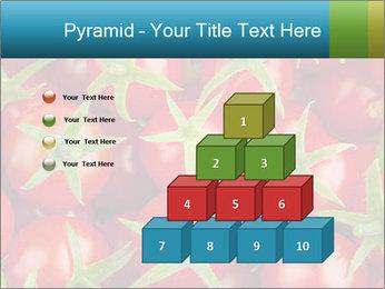 0000063172 PowerPoint Templates - Slide 31