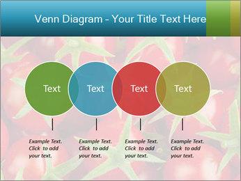 0000063172 PowerPoint Templates - Slide 32