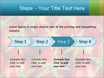 0000063172 PowerPoint Template - Slide 4