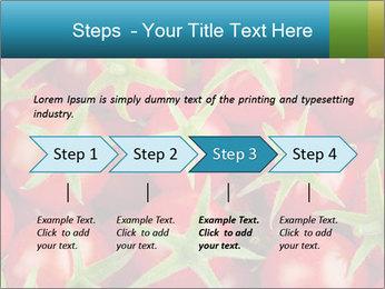0000063172 PowerPoint Templates - Slide 4