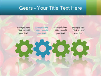 0000063172 PowerPoint Template - Slide 48