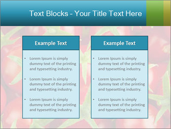 0000063172 PowerPoint Templates - Slide 57