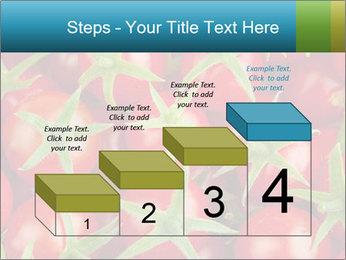 0000063172 PowerPoint Templates - Slide 64