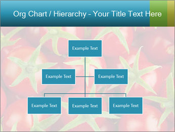 0000063172 PowerPoint Templates - Slide 66
