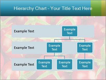 0000063172 PowerPoint Templates - Slide 67