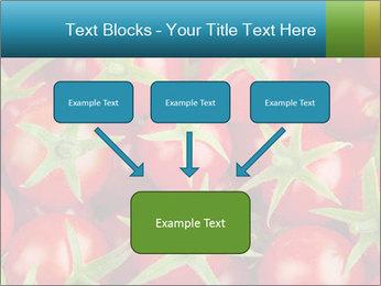 0000063172 PowerPoint Templates - Slide 70