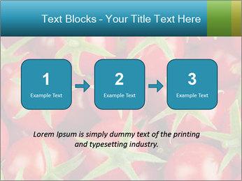 0000063172 PowerPoint Templates - Slide 71