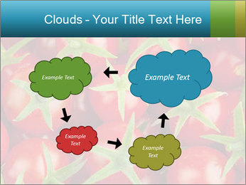 0000063172 PowerPoint Templates - Slide 72