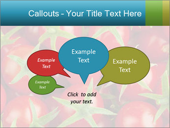 0000063172 PowerPoint Templates - Slide 73