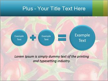 0000063172 PowerPoint Templates - Slide 75