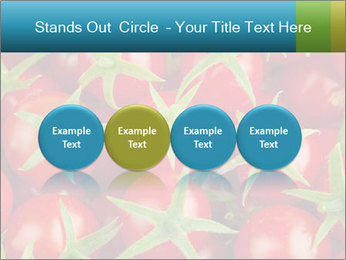0000063172 PowerPoint Template - Slide 76