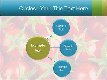 0000063172 PowerPoint Templates - Slide 79