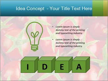 0000063172 PowerPoint Template - Slide 80