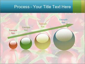 0000063172 PowerPoint Template - Slide 87
