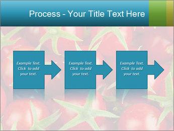 0000063172 PowerPoint Templates - Slide 88