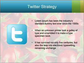 0000063172 PowerPoint Templates - Slide 9