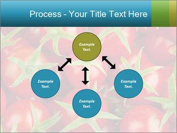 0000063172 PowerPoint Templates - Slide 91