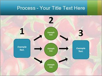 0000063172 PowerPoint Templates - Slide 92