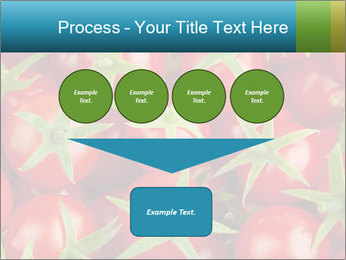 0000063172 PowerPoint Template - Slide 93