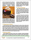 0000063173 Word Templates - Page 4