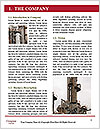 0000063181 Word Template - Page 3