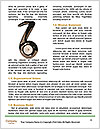 0000063197 Word Template - Page 4