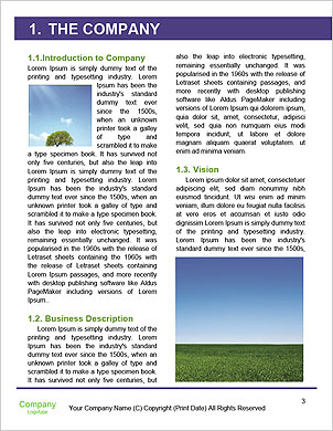 0000063201 Word Template - Page 3