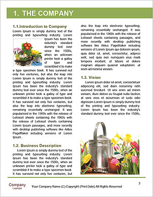 0000063203 Word Template - Page 3