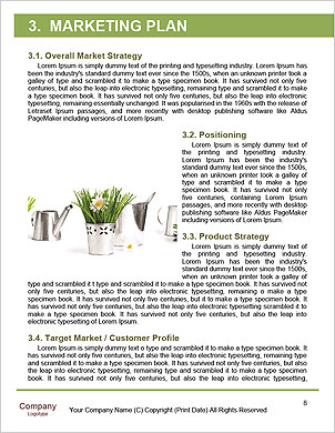 0000063203 Word Template - Page 8