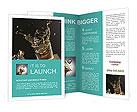 0000063204 Brochure Templates