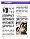 0000063220 Word Template - Page 3