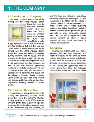 0000063221 Word Template - Page 3