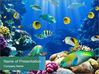 0000063226 PowerPoint Templates - Slide 1