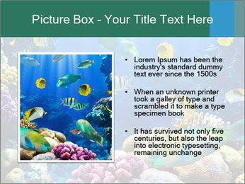 0000063226 PowerPoint Templates - Slide 13