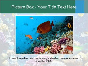 0000063226 PowerPoint Templates - Slide 15