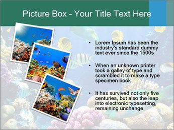 0000063226 PowerPoint Templates - Slide 17