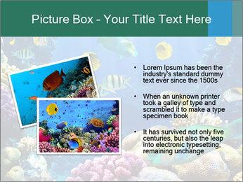 0000063226 PowerPoint Templates - Slide 20