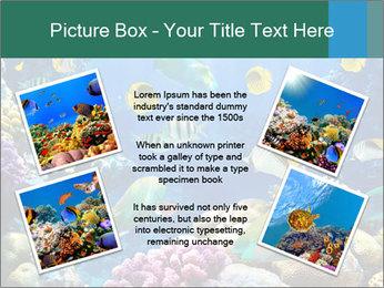 0000063226 PowerPoint Templates - Slide 24