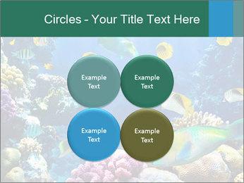 0000063226 PowerPoint Templates - Slide 38