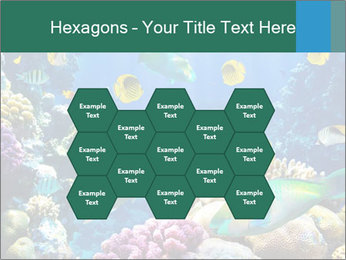 0000063226 PowerPoint Templates - Slide 44