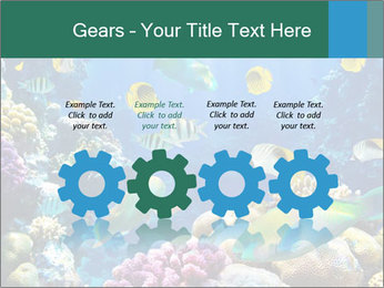 0000063226 PowerPoint Templates - Slide 48