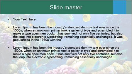 0000063226 PowerPoint Template - Slide 2