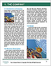 0000063226 Word Templates - Page 3