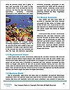 0000063226 Word Templates - Page 4