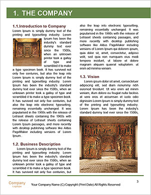 0000063229 Word Template - Page 3