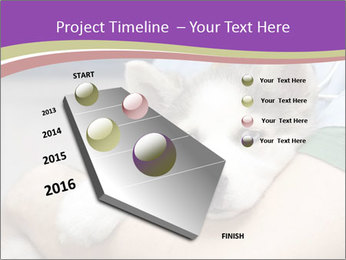 0000063230 PowerPoint Template - Slide 26